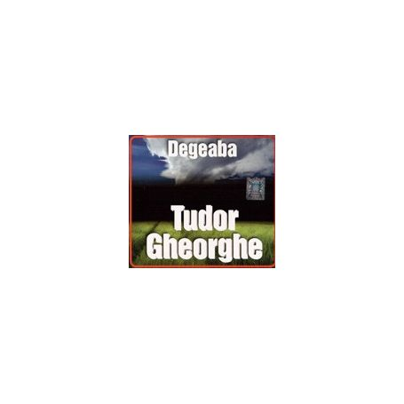 Degeaba - Tudor Gheorghe