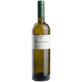 Serve - Terra Romana - Sauvignon Blanc / F.Alba