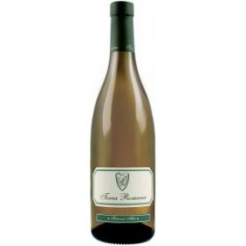 Serve - Terra Romana - Muscat Ottonel