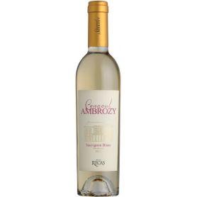 Recas - Conacul Ambrozy - Sauvignon Blanc - 2013