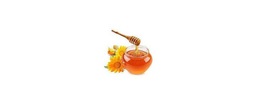 Honig kaufen zu günstigen Preisen